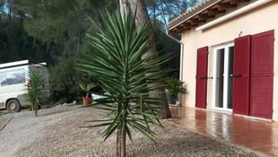 Energías renovables Palma de Mallorca