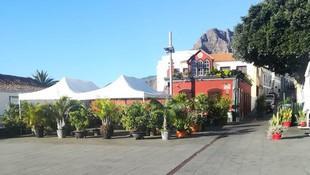 Restaurante de Cocina canaria en Santa Cruz de La Palma