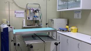 Quirófano Clínica Veterinaria Las Musas