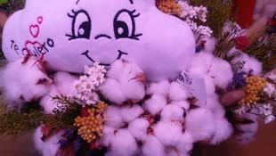 Amor de algodón