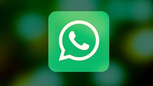 Numero whatsapp: 646 910 211