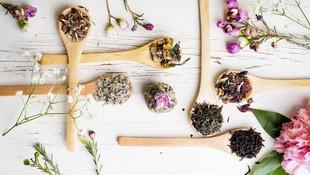 Terapias naturales en Granada