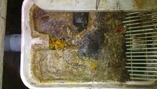 Limpieza de  rejas de desbaste en una depuradora  de una comunidad