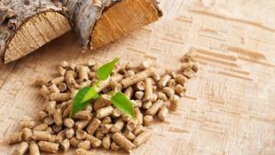 Biomasa en Pontevedra
