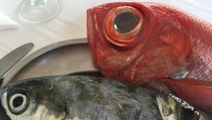Restaurante especializado en pescado en Lanzarote