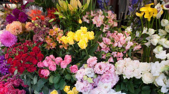 Venta de flores en Almendralejo